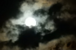 The moon over the marina