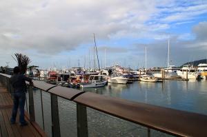 Exploring by the marina