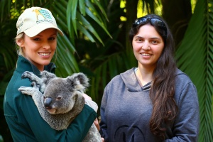 Australia Zoo has an incredible staff of interactive, friendly, and knowledgeable keepers that wander around all day to make sure YOU get to interact with their animals.