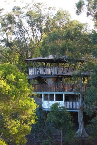 Bindi's very own wildlife treehouse on an island full of lemurs. Jealous? Yes.